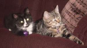 Bella & Greta