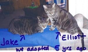 Jack & Elliot